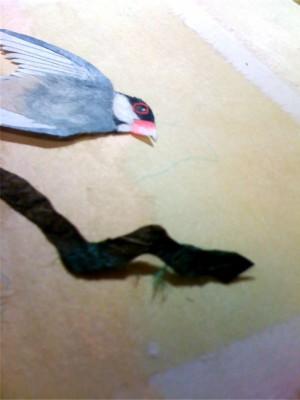 ■貼り込んでつくった鳥や木などのパーツを背景にレイアウト