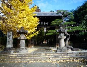 岩波農園のすぐそば、武田信玄公の菩提寺恵林寺